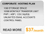 More Info on Corporate Hosting Plan